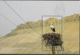 AZERBAIJAN, 2019, MNH, BIRDS, STORKS, S/SHEET - Storks & Long-legged Wading Birds