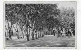 (RECTO / VERSO) PIERRELATTE EN 1951 - LE CHAMP DE MARS - BEAU CACHET - FORMAT CPA - Autres Communes