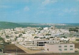 (B113) - ALESSANO (Lecce) - Panorama - Lecce