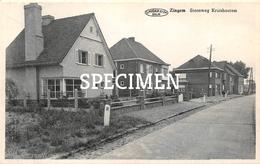 Steenweg Kruishoutem - Zingem - Zingem