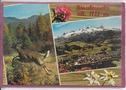 04.- BARCELONNETTE  Alt 1133 M - Barcelonnette