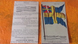 CHROMO LONDON S CELEBRATED SURGEON DENTIST GEORGES H JONESTOOTH POLISHER  FLAG DRAPEAU SWEDEN SUEDE - Other