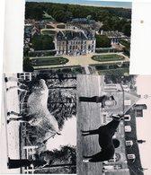 61    LE HARAS DU PIN  ( 7 Cartes Sur Le Haras + Un Feuillet De 4 Pages Sur Son Histoire) - Francia