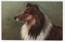 ANIMAUX - CHIEN * DOG * COLLEY * K. F. éditeurs * Série 605 N° 7789 - Perros