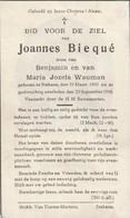 Austruweel,Stekene, 1945, Joannes Biequé, Wauman - Images Religieuses