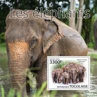 2020-02- TOGO -  ELEPHANTS         1V      MNH** - Elephants