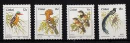 Ciskei - Birds UMM, 1985/9 - Ciskei