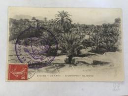 CPA MAROC - FIGUIG - Zenaga - La Palmeraie Et Les Jardins - Maroc