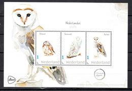 Nederland 2020, Persoonlijke Zegels: Nederlandse Uilen. Owl, Steenuil, Sneeuwuil, Kerkuil - Neufs