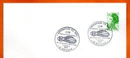 43 BRIOUDES   EXPO. DU RAIL 1988 Lettre Entière N° GH 382 - Gedenkstempels