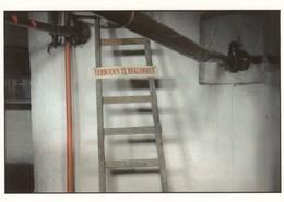 ALVERINGEM /  BROUWERIJ DE SNOEK  /   WESTHOEK STREEKMUSEUM - Alveringem