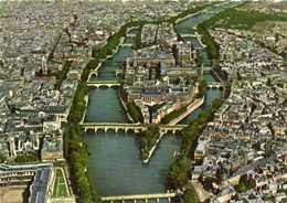 CPSM Grand Format EN AVION SUR PARIS  Pilote Operateur R Henrard  L'Ile De La Cité Et La Cathedrale Notre Dame Colorisée - Frankrijk