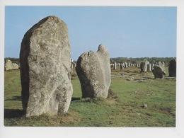 """Carnac Alignements Du Menec : Le  Menhir """"le Cheval De Saint Cornely"""" - Dolmen & Menhirs"""