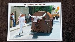 CPM MEZE 34 LE BOEUF ANIMAL TOTEMIQUE ED MERIDIONALES FOLKLORE - Mèze