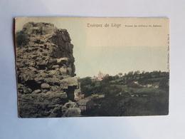 43466-   Environs De Liege -  Ruines  Chateau De Dalhem  Série  83  N°  8  Couleur - Dalhem