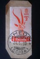 Africa Orientale Italiana 1938 - Serie Pittorica - 2c Usato Su Frammento - U 1 - Ohne Zuordnung