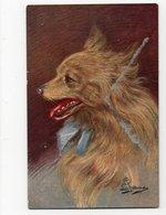 ANIMAUX - CHIEN * DOG * ILLUSTRATEUR à Identifier * - Dogs