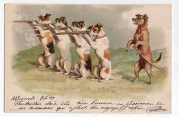 ANIMAUX - CHIEN * DOG * Chiens Humanisés * FUSIL * Carte N° 879 * KF éditeurs, Paris - Honden