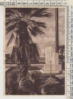 LATINA LITTORIA PIAZZA DANTE 1940 - Latina