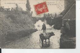 GAVRAY   Cascade Du Moulin 1907 - Otros Municipios