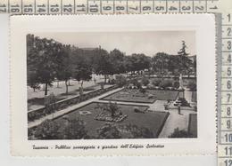 TUSCANIA VITERBO PUBBLICA PASSEGGIATA E GIARDINO DELL'EDIFICIO SCOLASTICO 1955 - Viterbo