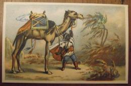 Chromo Image Bon Point Chromo. Vers 1880-1890. Dromadaire Méhari. Verso Vierge - Chromos