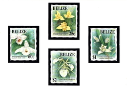 Belize 1009-12 MNH 1993 Orchids - Belice (1973-...)