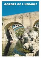 34 Les Gorges De L'Hérault Le Pont Du Diable (2 Scans) - Sin Clasificación