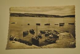 29 Finistere Port Manech Manec'h Le Port - France