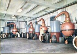 38500 VOIRON - Distillerie De La Grande-Chartreuse - La Salle Des Alambics - Deux Moines Au Travail - Voiron