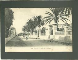 Le Kram Rue De Carthage édit. ND N° 606 - Tunisia