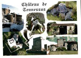 Amailloux Chateau De Tennessus 2010  CPM Ou CPSM - Autres Communes