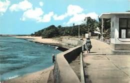 GUADELOUPE  MARIE GALANTE - Guadeloupe
