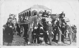 ¤¤  -   INDE   -  DELHI  -  Carte-Photo D'un Attelage D'Eléphants  -  Fête , Indous      -  ¤¤ - Inde