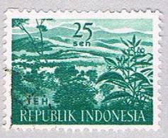 Indonesia 498 Used Tea Plantation 1960 (BP25723) - Indonesia
