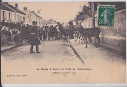 AVON-FONTAINEBLEAU - La Chasse à Courre L'Hallali Du Cerf Meute Chiens - Avon