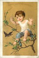 MAISON DE LA BELLE JARDINIÈRE - Vêtements, 2 Rue Du Pont Neuf Paris;enfants,  Lot De 4 Chromos (format 12cm X 7,8cm) - Autres
