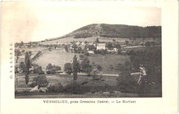 FR38 VEYSSILIEU - Le Burzinet - Other Municipalities