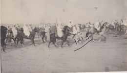 PH101 - TUNISIE - KEBILLI - FANTASIA DU MAGHZEN - VERS 1905 - Afrique