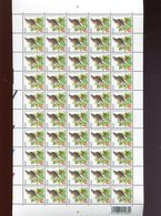 Belgie 3264 Buzin Volledig Vel FULL SHEET Vogels Birds Oiseaux MNH Plaatnummer 1 22/2/2005 - 1985-.. Birds (Buzin)
