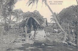 CEYLON - COLOMBO / MOULIN A HUILE - Sri Lanka (Ceylon)