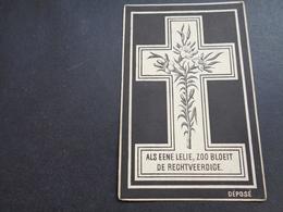 Doodsprentje ( 1204 )   Capelle  -  Watou   1893 - Obituary Notices