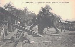 MADRAS / ELEPHANT AU TRAVAIL PORTANT DES PLANCHES - Inde