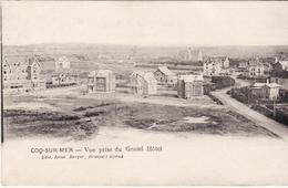 COQ SUR MER  DE HAAN VUE PRISE DU GRAND HOTEL BRIEFSTEMPEL MARINE  1914 - De Haan