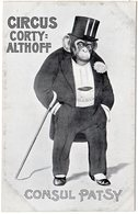 Consul Patsy, Circus Cortty-Althoff, Ungebr. Sw-AK M. Schimpanse Im Smoking - Animals