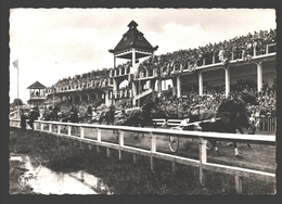 Waregem - Paardewedrennen - Tribune - Waregem