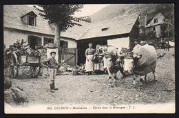 MONTAUBAN DE LUCHON (460 Habitants) Animation TOP Devant La Ferme. - France