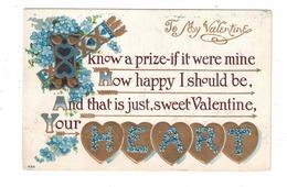 "VALENTINE'S GREETINGS, ""To My Valentine..."", Pre-1920 Postcard From USA - Saint-Valentin"