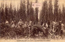 SAINT JULIEN  (côte D'or 21) La Cueillette Du Houblon - Autres Communes