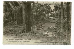 Dakar - Forêt De Palmiers Au Bord D'une Rivière (animation)  Circulé 1931, Sous Enveloppe - Sénégal
